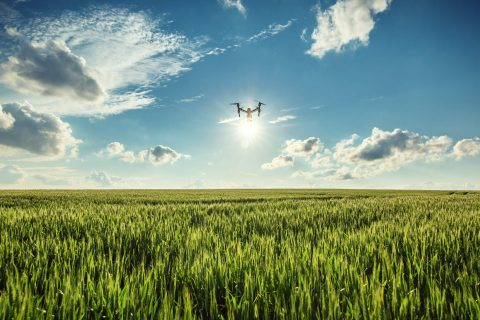 Wisconsin startup uses drones to survey farmland